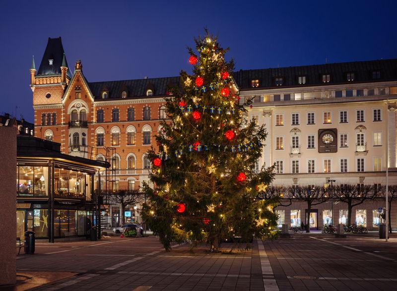 Weihnachtsbeleuchtung Außen Für Große Bäume.Festliche Beleuchtung Nel